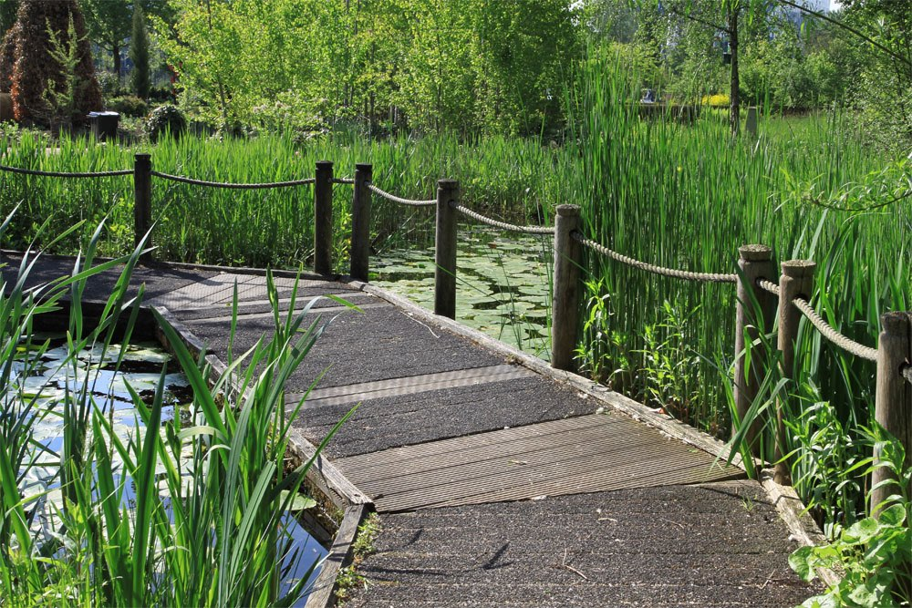 Wooden Footpath Over Pond