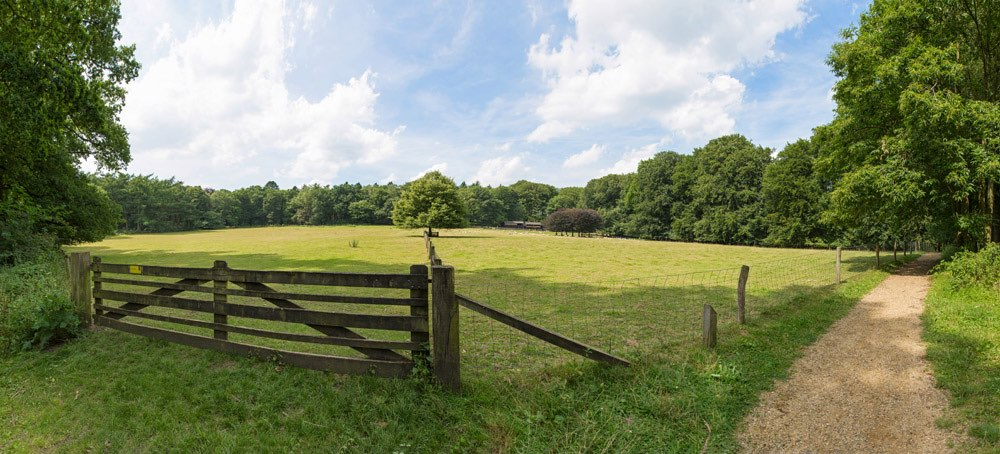 Wooden fence to a meadow with sheep shed